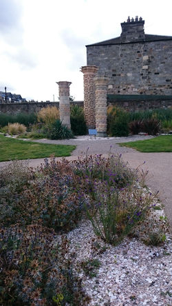 Portobello community garden