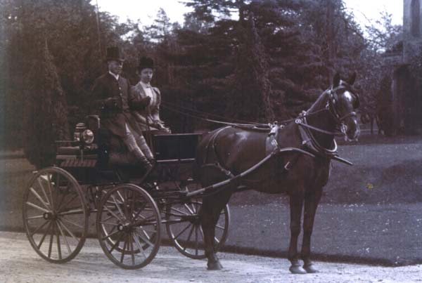 Coachman And Carriage Horse At South Bantaskine c.1900