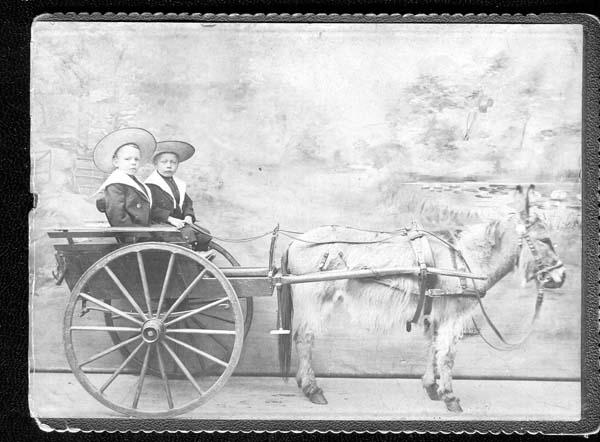 Studio Portrait Children Donkey And Carriage c.1908