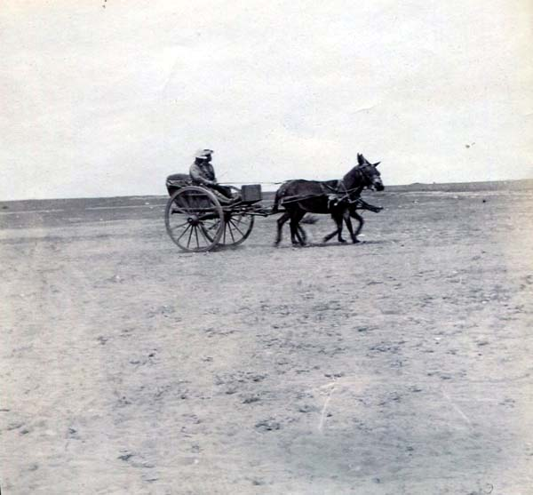 Travelling By Horse And Cart Over Plain, Boer War 1899-1902