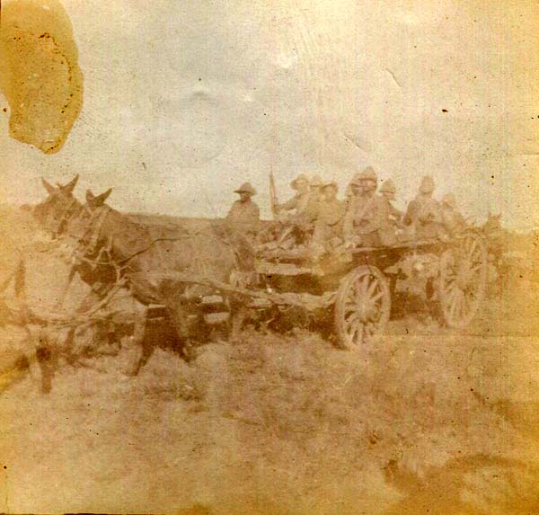 Soldiers Being Transported On Horse Drawn Wagon, Boer War 1899-1902