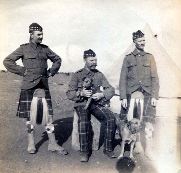 Soldiers At Camp With Pet Mascots, Boer War 1899-1902