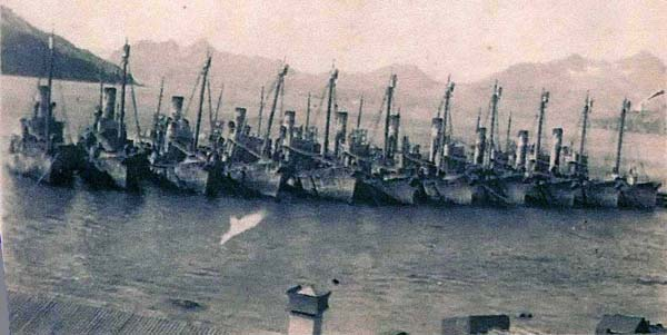 Whaling Ships In Harbour c.1937