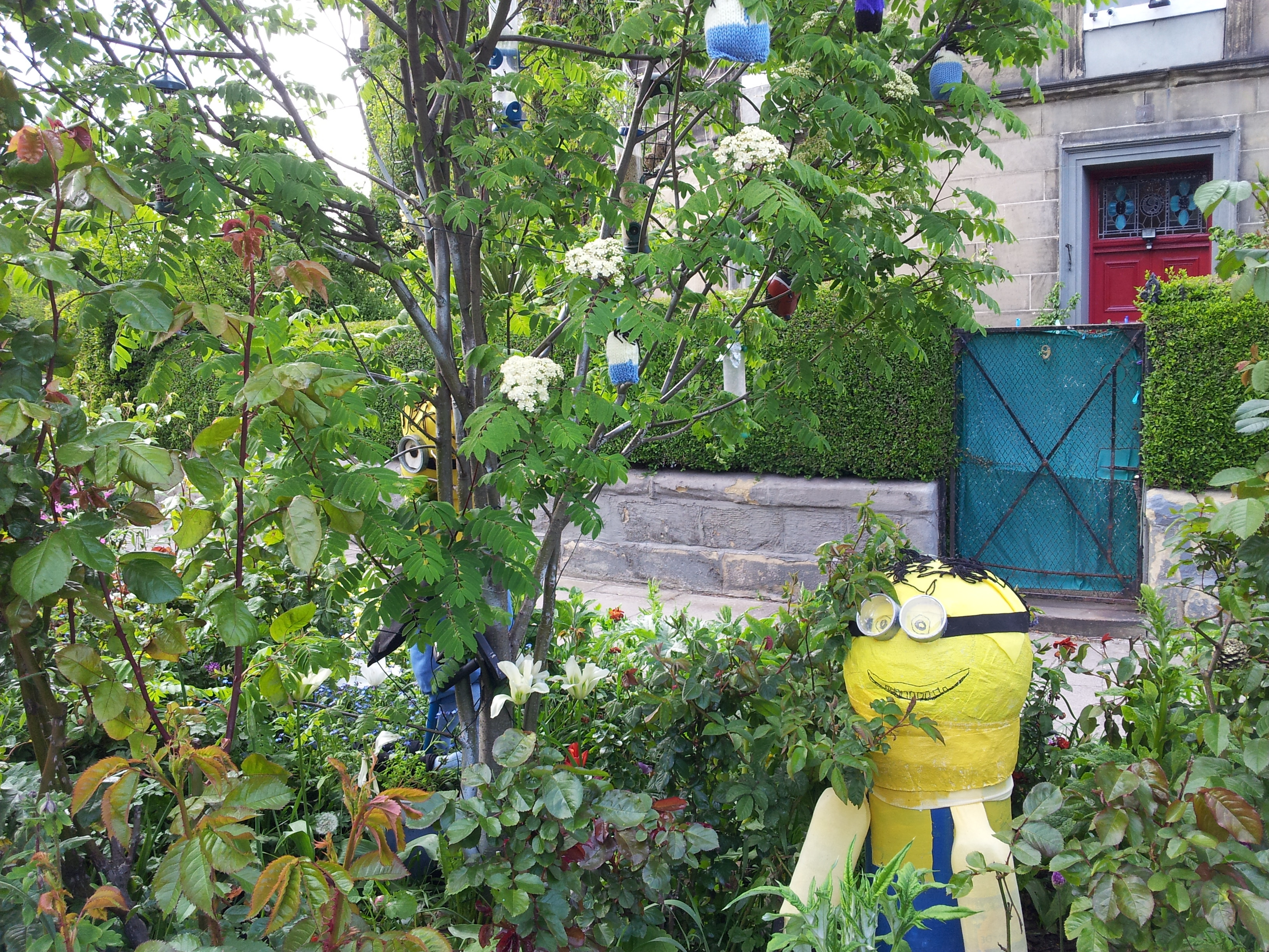 Minions in the garden