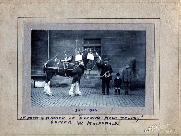 Evening News Trophy Prize-Winning Horse, June 1925