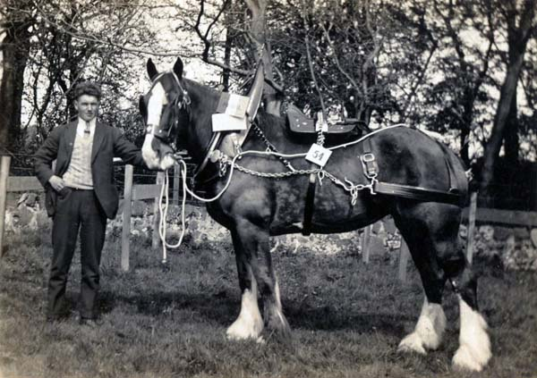 Horseman With Work Horse c.1940