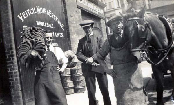Veitch, Moir & Erskine, Wholesale Fruit Merchants 1920s