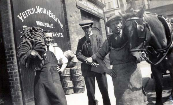 Veitch, Moir & Erskine, Wholesale Fruit Merchants 1920s