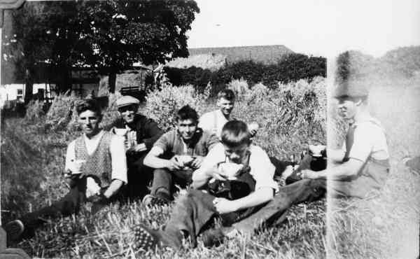 Tea Break During The Harvest 1938
