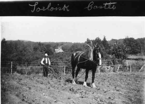 Ploughing At Torloisk Castle Estate 1930