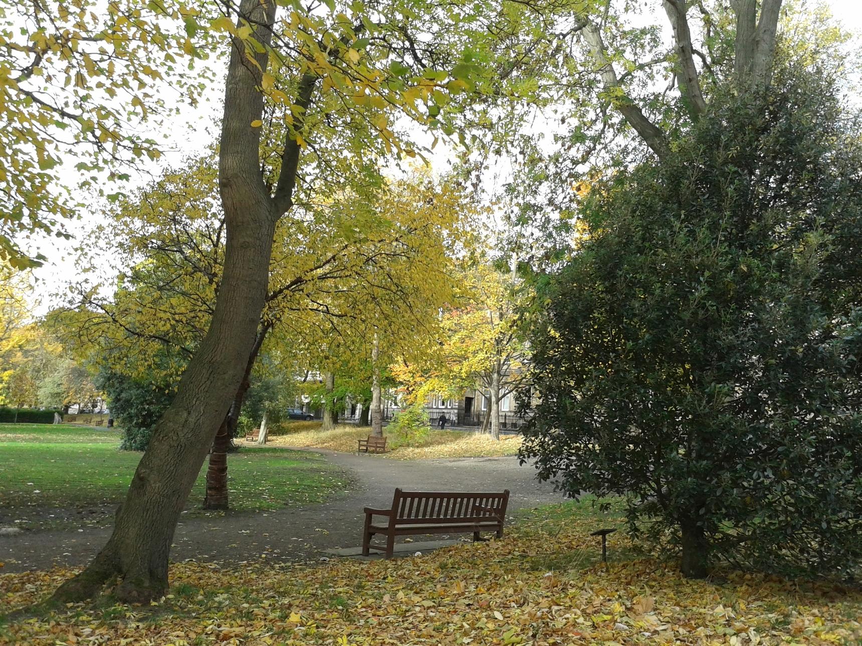 Autumn in George Square