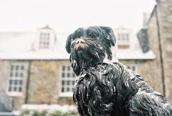 A Snowy Bobby
