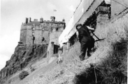 Scything Grass At Edinburgh Castle 1964