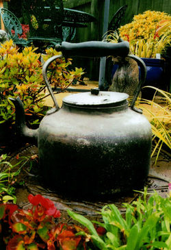 This was our families kettle that we used in 1935 in