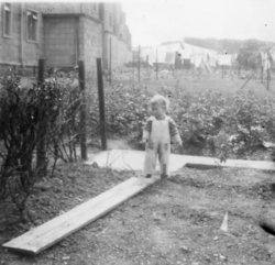 Toddler in the garden, Oxgangs