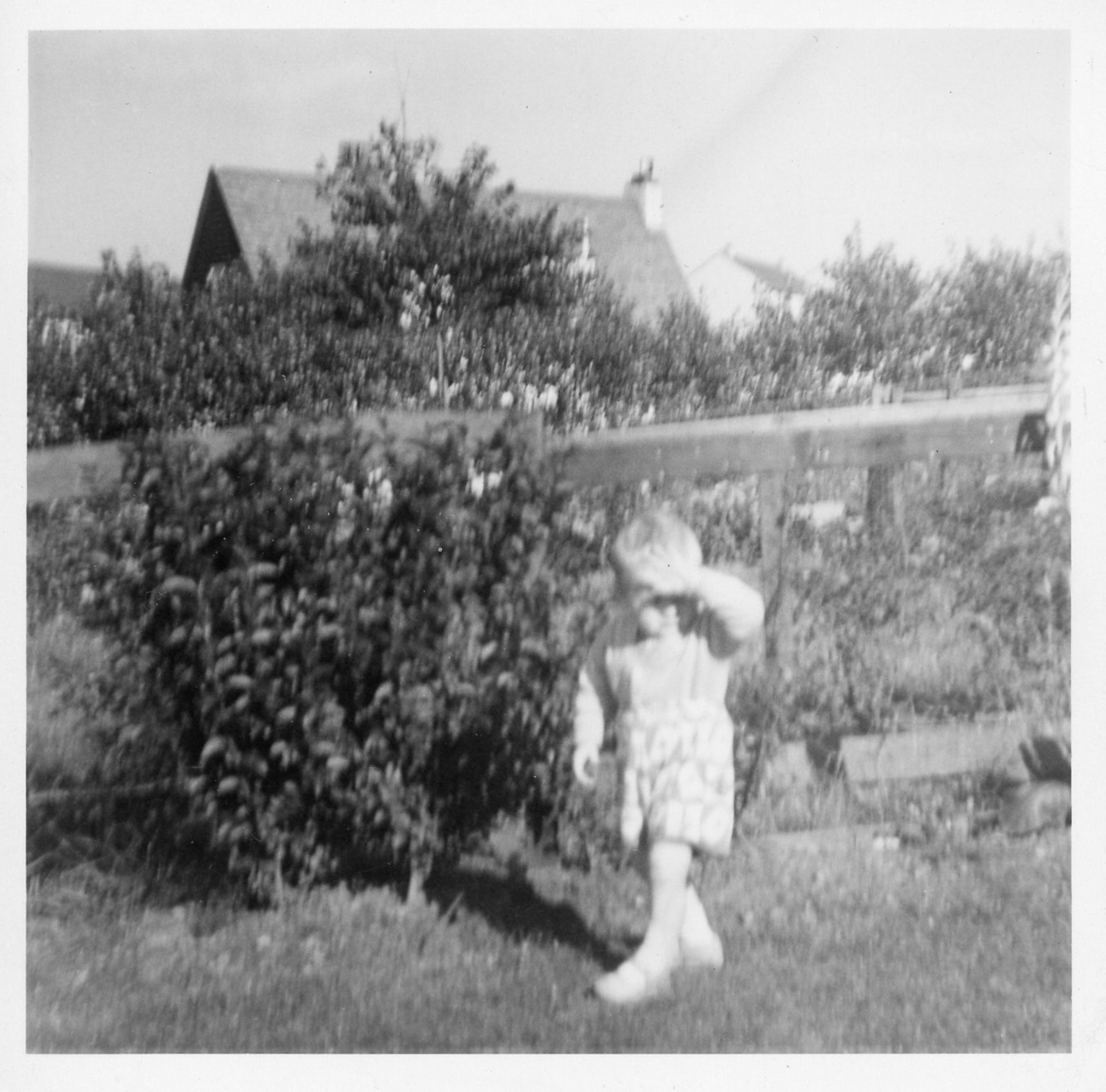Small child in garden, Oxgangs