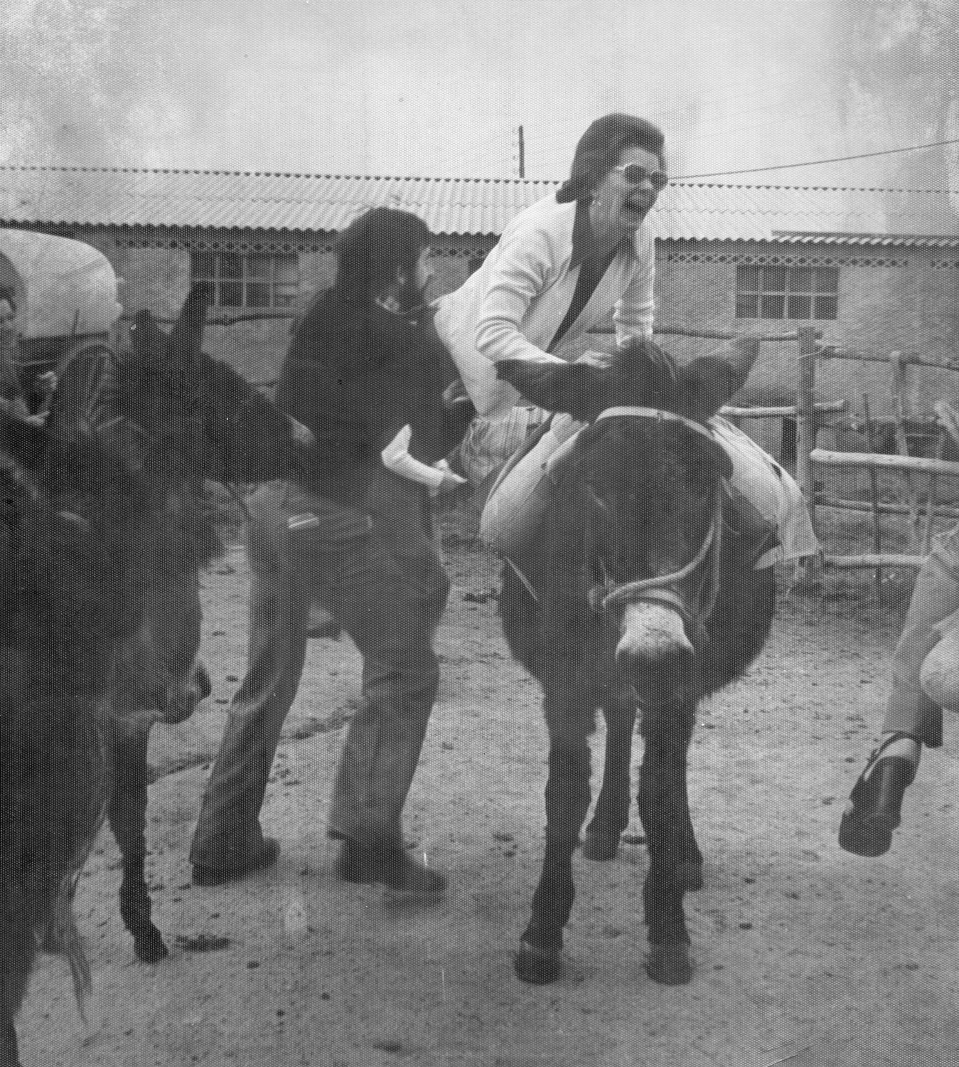 Woman Being Helped Onto Donkey In Blackpool 1960s