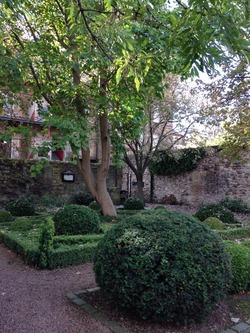 Garden in Dunbar Close