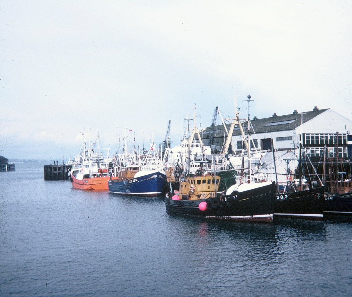Trawlers Moored At Granton Harbour 1960s