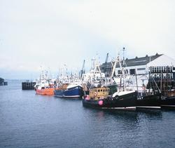 Trawlers Moored At Granton Harbour 1970s