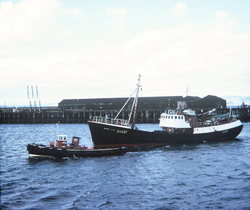 Arctic Trawler With Tug At Granton Harbour 1960s