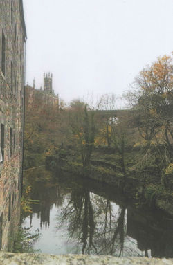 I took this photo standing on the stone bridge with the Water of Leith flowing below.