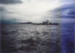 "Wreck Of The ""Switha"" In The Firth Of Forth c.1991"
