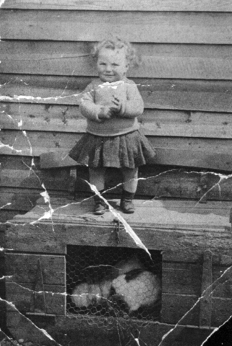 Young Girl Standing On Top Of Rabbit Hutch 1940s