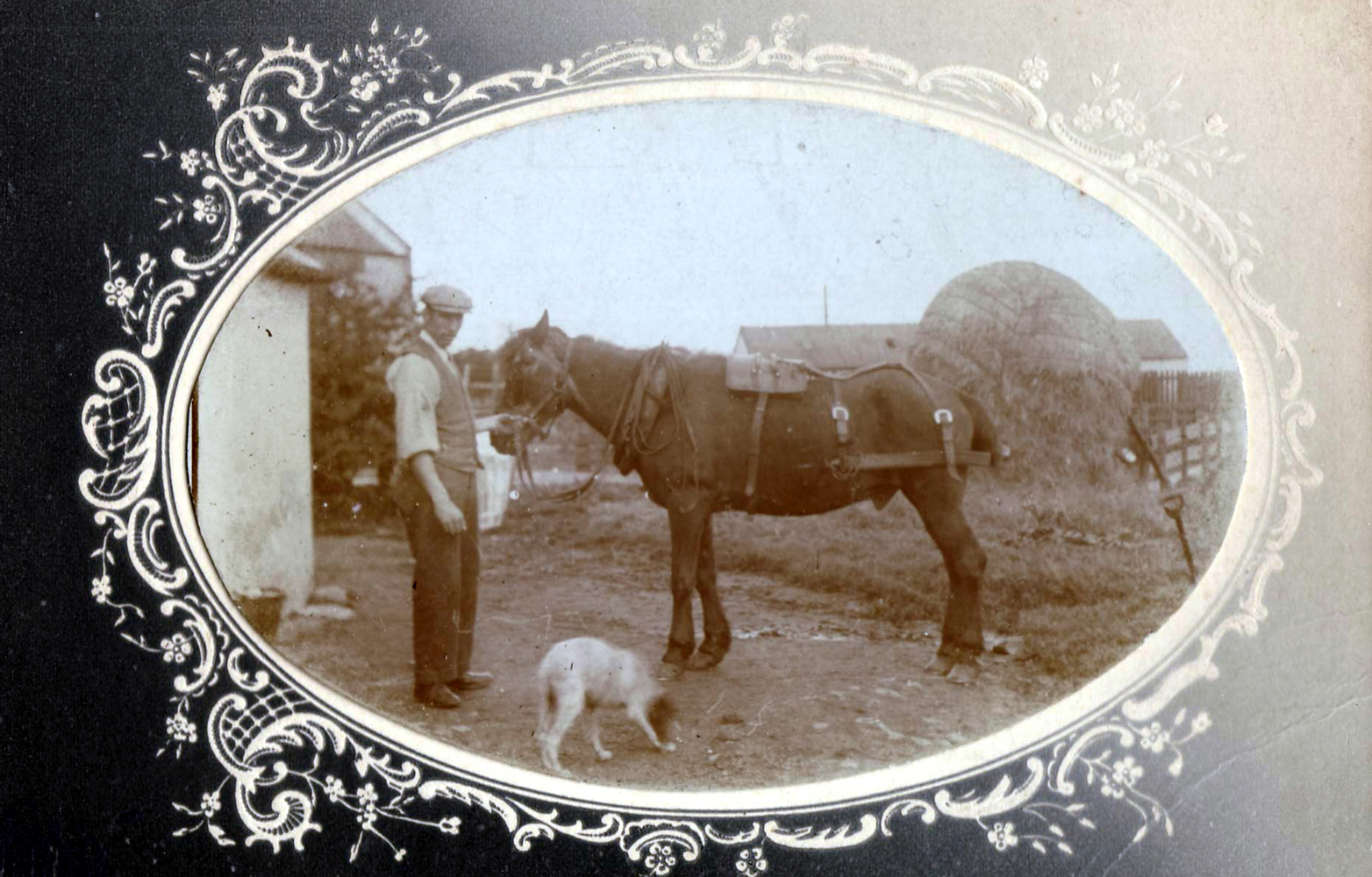 Farmhand With Horse And Dog 1900s