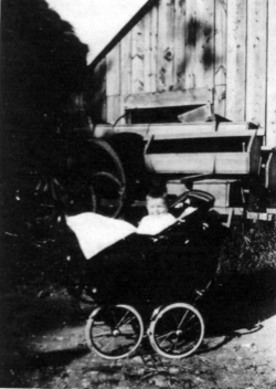Young Child In Pram In Back Yard 1930s