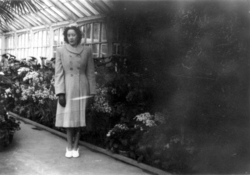 Young Lady Standing In Glasshouse At Botanics, early 1950s