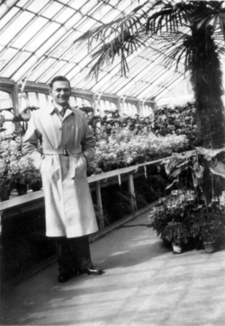 Man In Raincoat Standing In Botanics Glasshouse, early 1950s