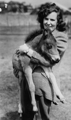 Woman Holding Foal, late 1940s
