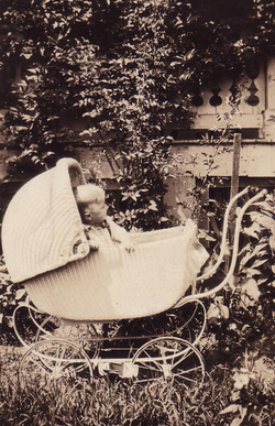 Child Sitting In Pram By Foliage 1930s