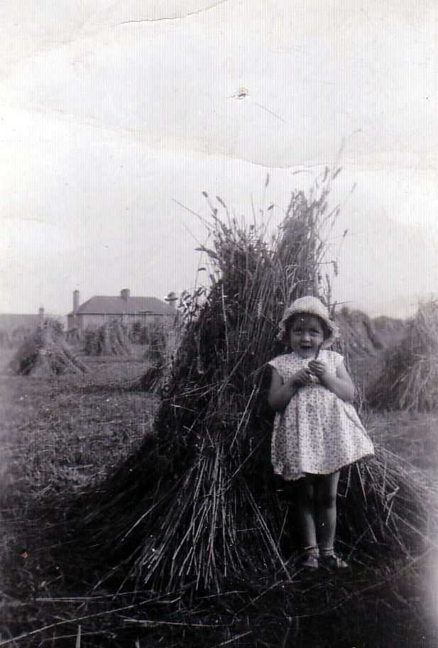Young Girl Standing By Sheaf Of Corn At Saughton c.1936