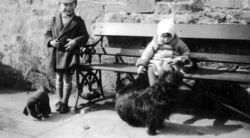 Brother And Sister Sitting On Public Bench c.1932