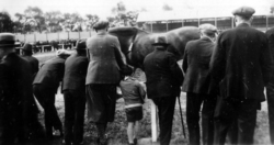 Livestock Or Race Meeting 1930s
