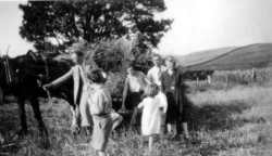 Family Day Out To A Farm c.1934