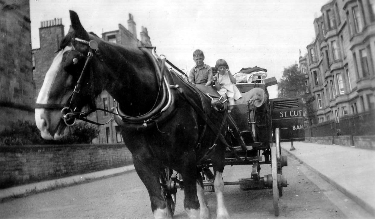 St Cuthberts Bakery Delivery Horse In Falcon Gardens With Children Sitting On Driver's Seat c.1934