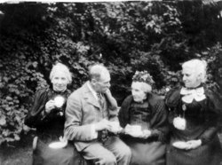 Victorian Ladies And Gentleman Drinking Tea In The Garden 1890s