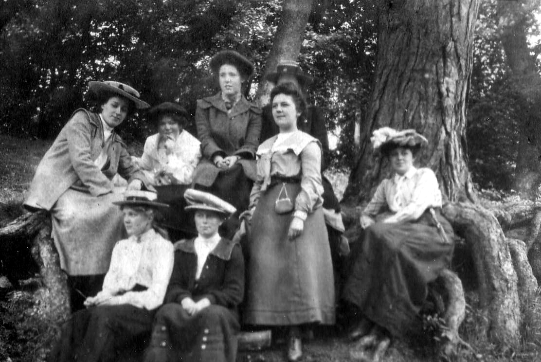 Edwardian Ladies Gathered Beneath A Large Tree Trunk c.1910