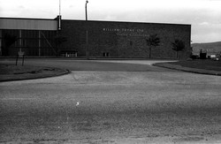 Picture 3 - Sighthill Industrial Estate-William Thynes Factory 1960