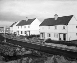 Picture A - Wester Hailes School and the Swedish Wooden Houses.