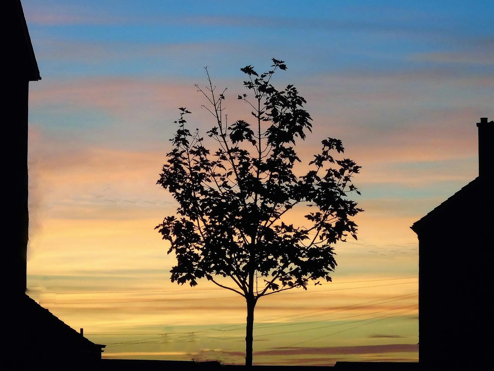 An Oxgangs sunset