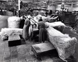 Feeding Sisal For Rope-Making Into Machine 1960s